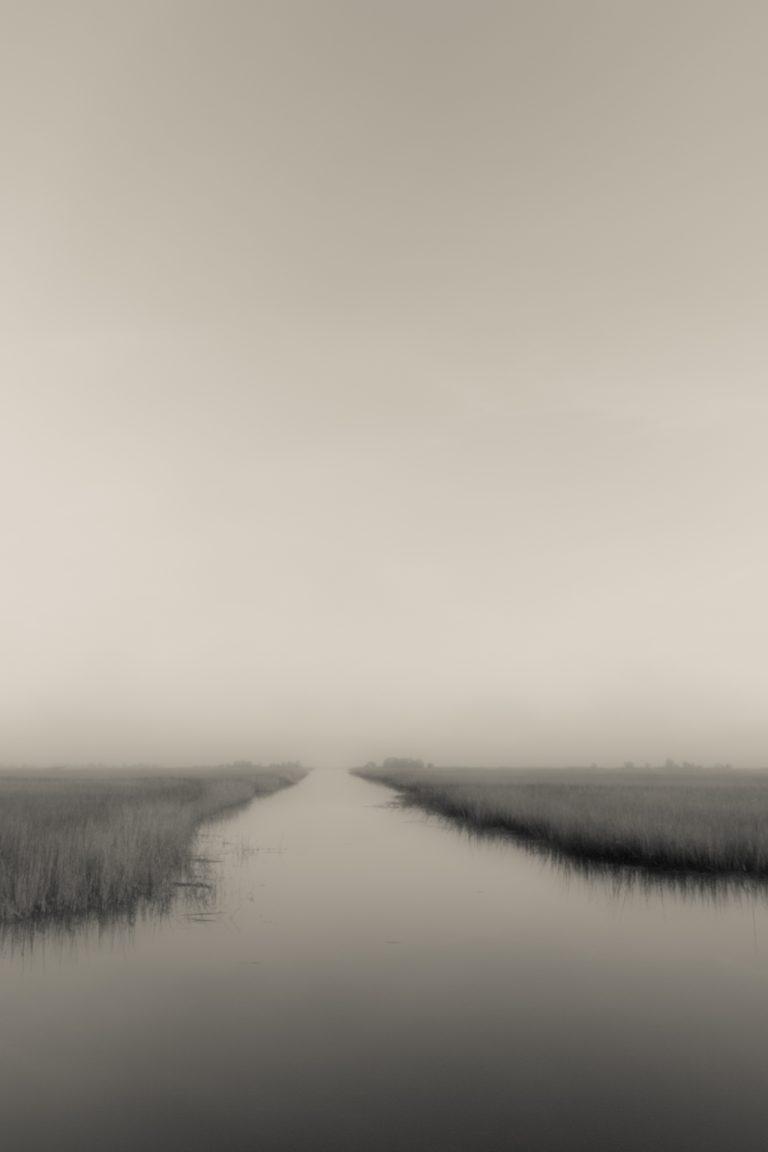 ace basin, marsh, south carolina, beaufort, tidal creek,