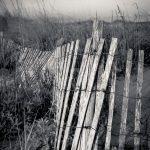 beach, sand dune, Beach scene, black and white photography