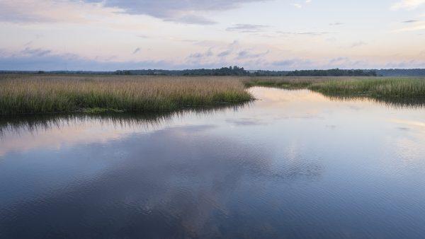 ace basin, sunrise, marsh photography, beaufort, south carolina, landscape photography