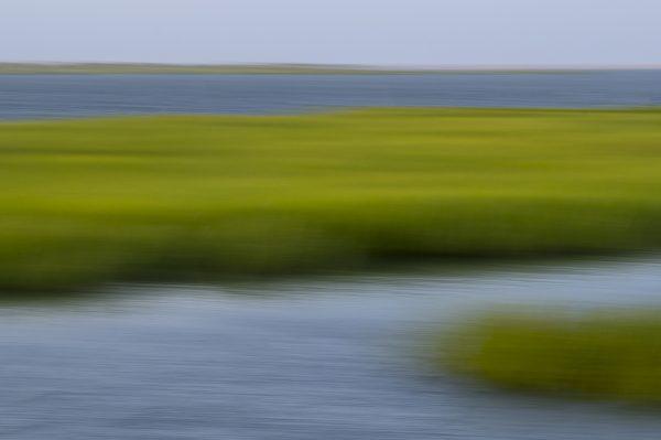 Marsh, Abstract