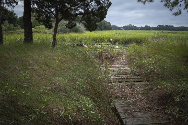 dock, marsh, lowcountry, green, blue,tidal creek